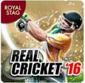 क्रिकेट गेम डाउनलोड